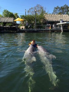 sam with dolphins