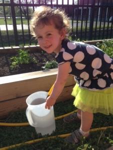 Gardening Blog1
