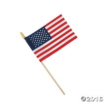 small-american-flags-on-wooden-sticks-5_161